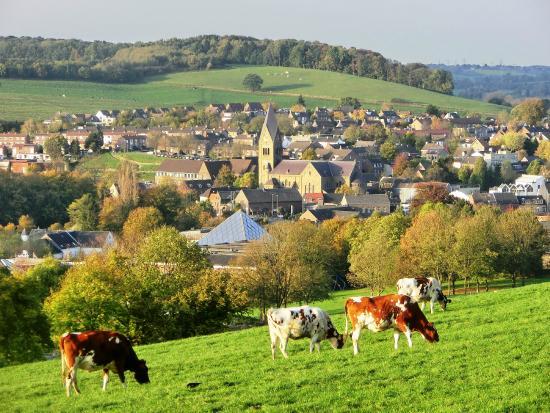 Schin op Geul in de lage landen (Nederland, Limburg, Geul)